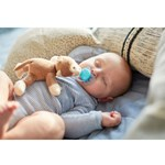 Philips Avent Snuggle - Plush toy with UltraSoft soother Monkey