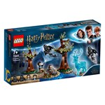 LEGO Harry Potter 75945 LEGO Harry Potter Conf. WW 1
