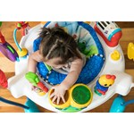 Baby Einstein Neighborhood Symphony Activity Jumper™